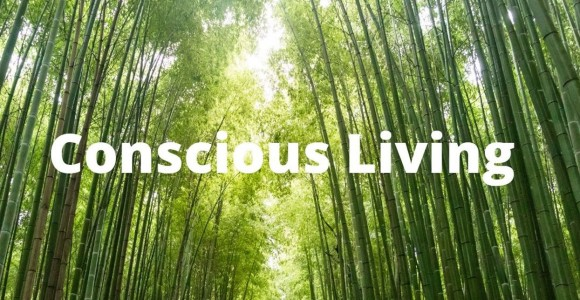 Conscious living – Why I don't eat fish/krill oil?